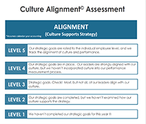 CultureAssessmentResource