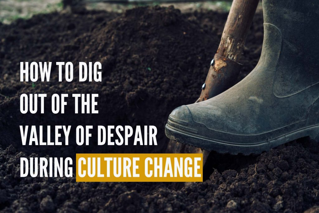 How to Dig Out of the Valley of Despair During Culture Change
